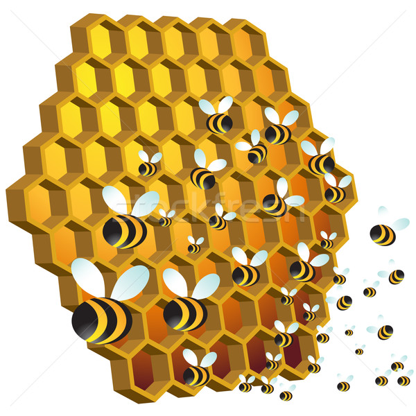 Honey Bees Stock photo © cteconsulting