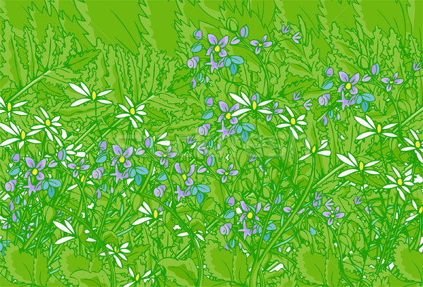 Ogród piękna zielone napomknąć fioletowy kwiaty Zdjęcia stock © cteconsulting