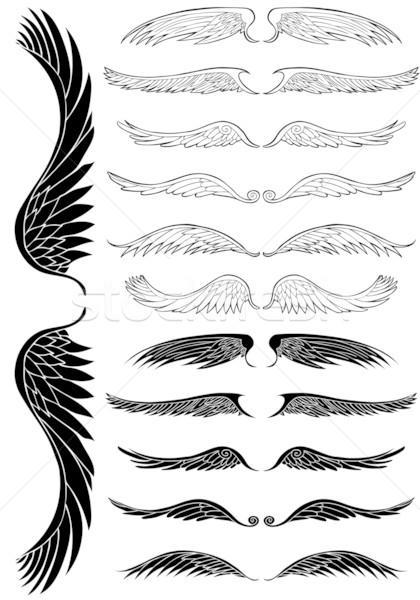 Angyalszárnyak szett 12 madár tinta grafikus Stock fotó © cteconsulting