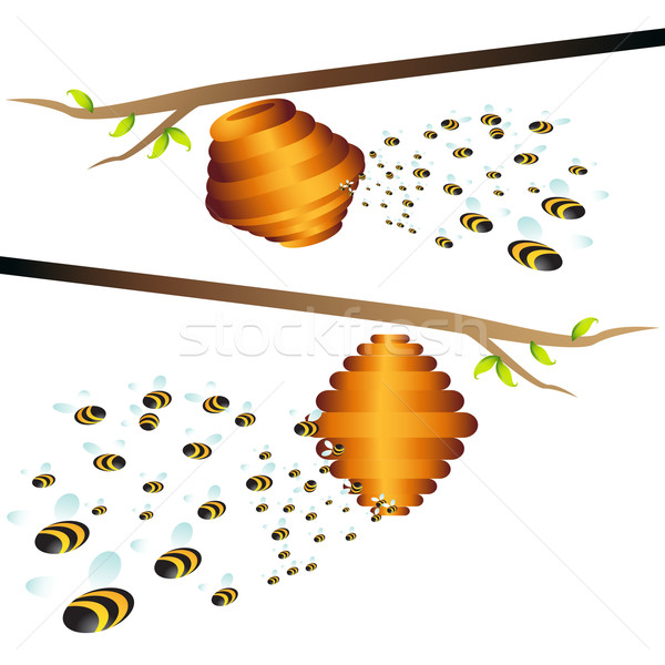 Beehive Branch Stock photo © cteconsulting