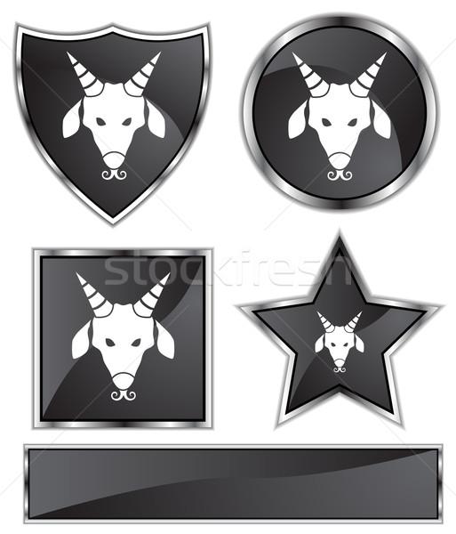 Zodiac - Capricorn Stock photo © cteconsulting