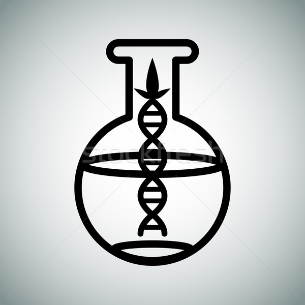 Biotech Research Flask Stock photo © cteconsulting