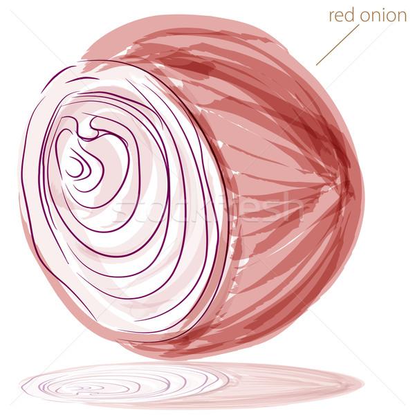 Vöröshagyma kép vízfesték festmény absztrakt piros Stock fotó © cteconsulting