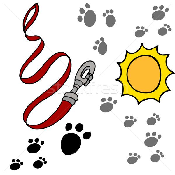 Cão coleira imagem pata sol cães Foto stock © cteconsulting