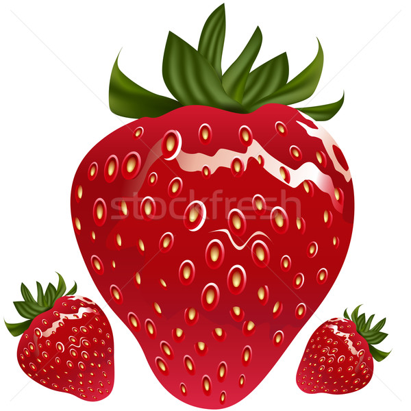 Realistic Strawberry Stock photo © cteconsulting