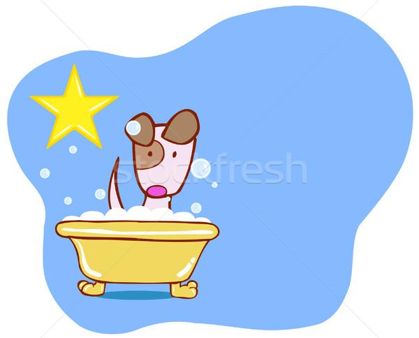 Hond bad star puppy hoektand genieten Stockfoto © cteconsulting