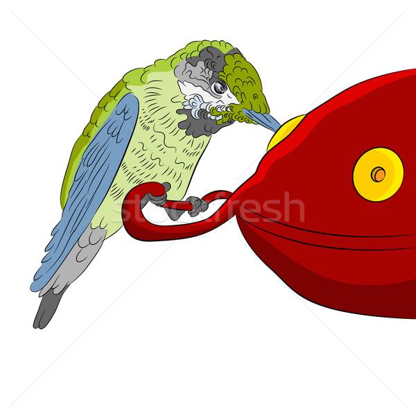 Hummingbird at Feeder Stock photo © cteconsulting