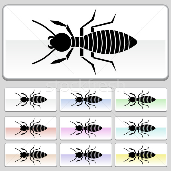Square web buttons - Termite Stock photo © cteconsulting