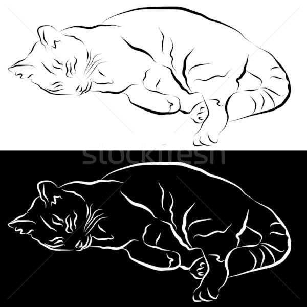 Сток-фото: спальный · кошки · линия · рисунок · изображение · черный