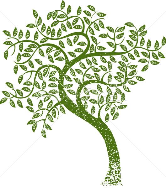 緑の木 画像 グランジ スタイル 抽象的な 地球 ストックフォト © cteconsulting