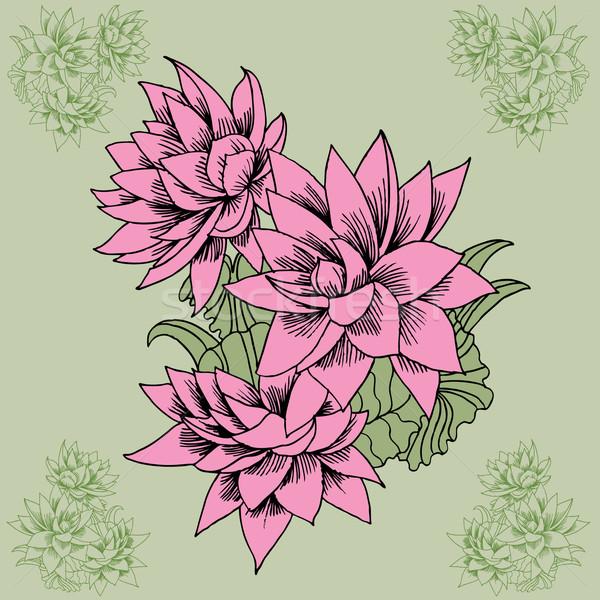Flor rosa dibujado a mano verde flores naturaleza fondo Foto stock © cteconsulting