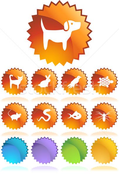 ПЭТ иконки изображение семьи собака рыбы Сток-фото © cteconsulting