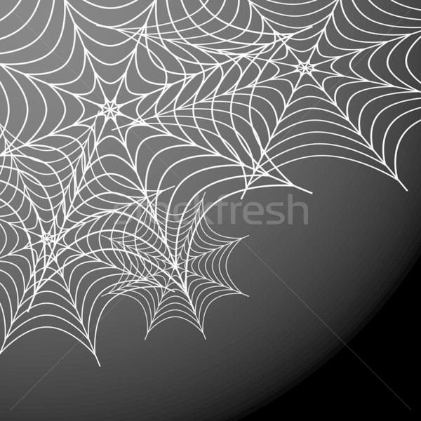 Web afbeelding spinneweb achtergrond spin patroon Stockfoto © cteconsulting