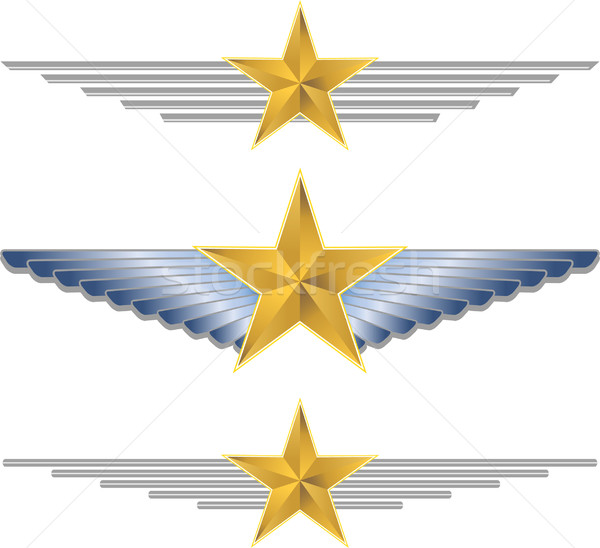 Gold Shield Wings Stock photo © cteconsulting