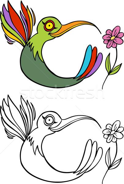 Beija-flor imagem flores arte pássaro aves Foto stock © cteconsulting