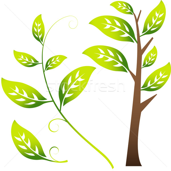 3D Image of Branch / Leaves Stock photo © cteconsulting