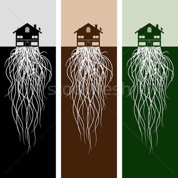 House With Roots Stock photo © cteconsulting