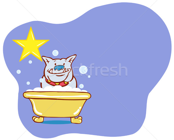 Hond bad star bulldog hoektand genieten Stockfoto © cteconsulting