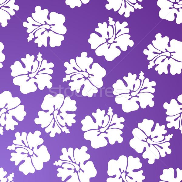 Hibiscus modèle fleur fleurs art Photo stock © cteconsulting