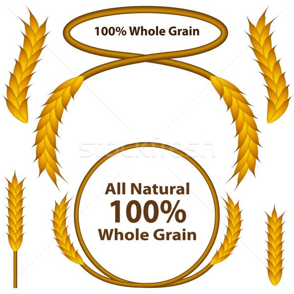 Whole Grain Wheat Set Stock photo © cteconsulting