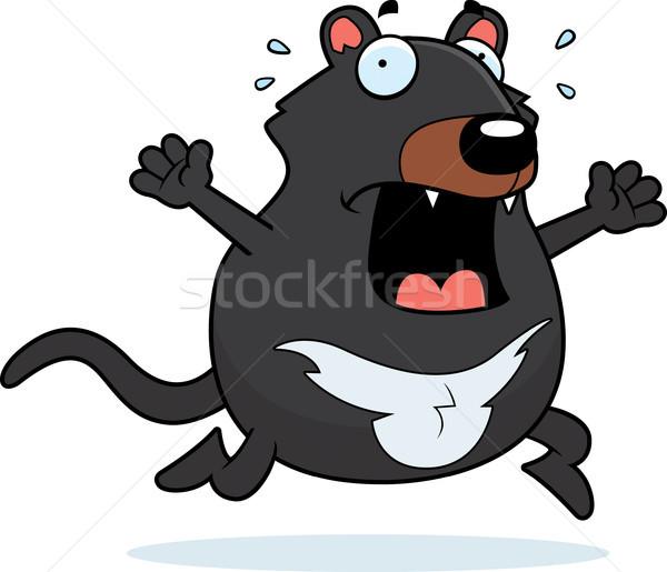 Cartoon Tasmanian Devil Panic Stock photo © cthoman