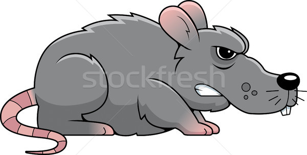 Angry Rat Stock photo © cthoman