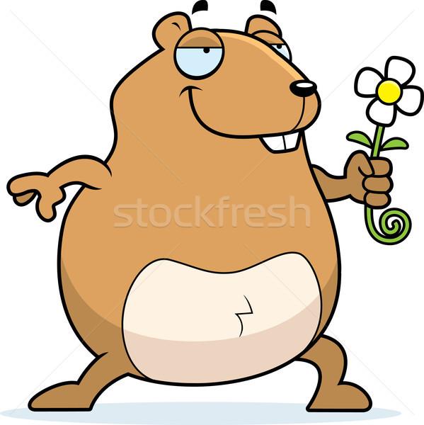 Criceto flor feliz desenho animado margarida Foto stock © cthoman