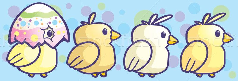 Baby Chicks Stock photo © cthoman