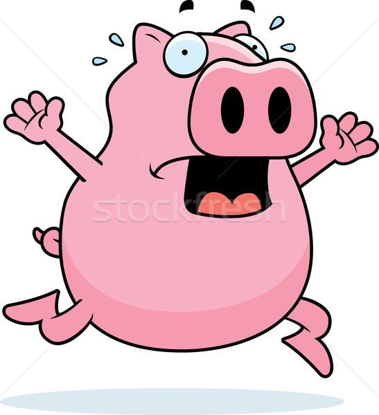 豚 パニック 漫画 を実行して 動物 ストックフォト © cthoman