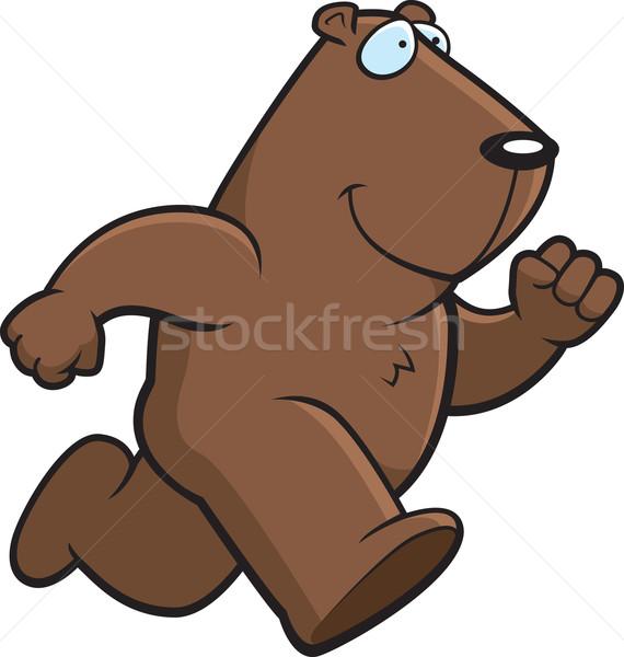 Groundhog Running Stock photo © cthoman