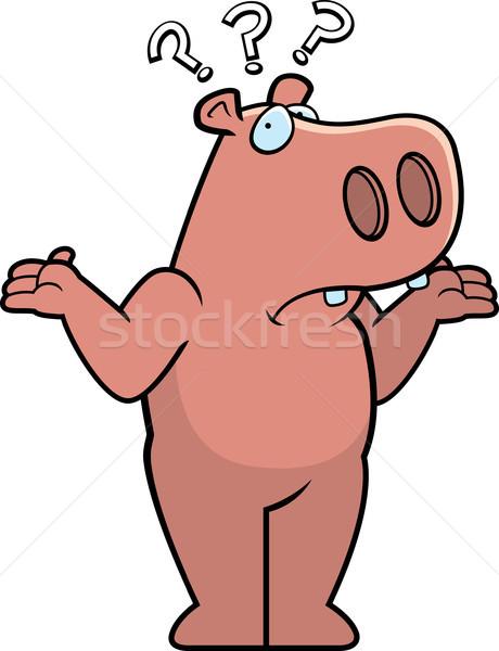 Hippo Confused Stock photo © cthoman
