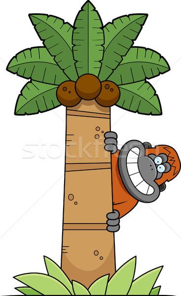 Karikatür orangutan ağaç örnek hurma ağacı hayvan Stok fotoğraf © cthoman