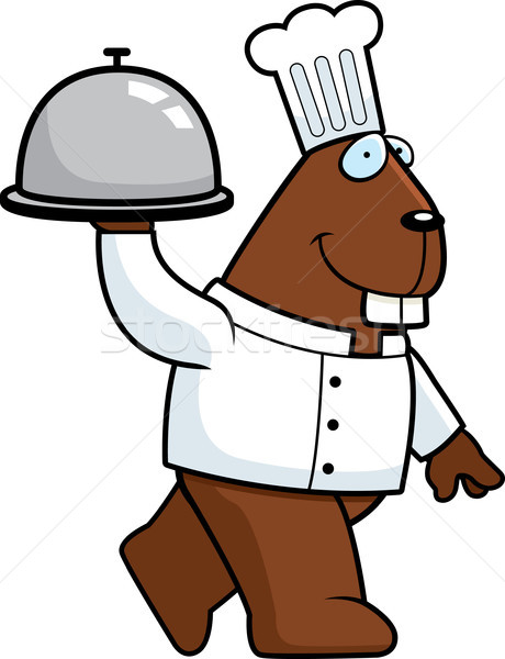 Beaver Chef Stock photo © cthoman