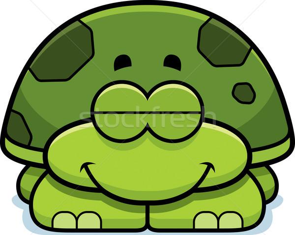 Dormire piccolo tartaruga cartoon illustrazione felice Foto d'archivio © cthoman