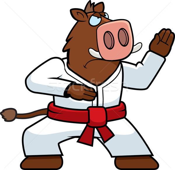каратэ кабан Cartoon свинья вектора Сток-фото © cthoman