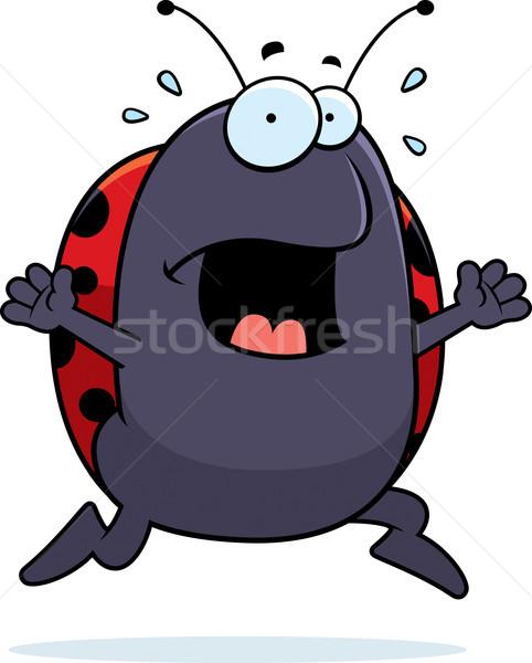 てんとう虫 パニック 漫画 を実行して 怖い ストックフォト © cthoman