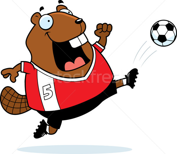 Cartoon bever voetbal kick illustratie Stockfoto © cthoman