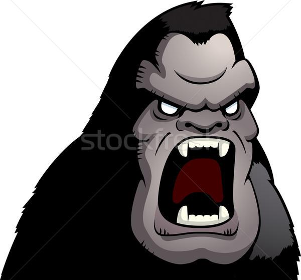 Mérges emberszabású majom rajz őrült szörny vektor Stock fotó © cthoman