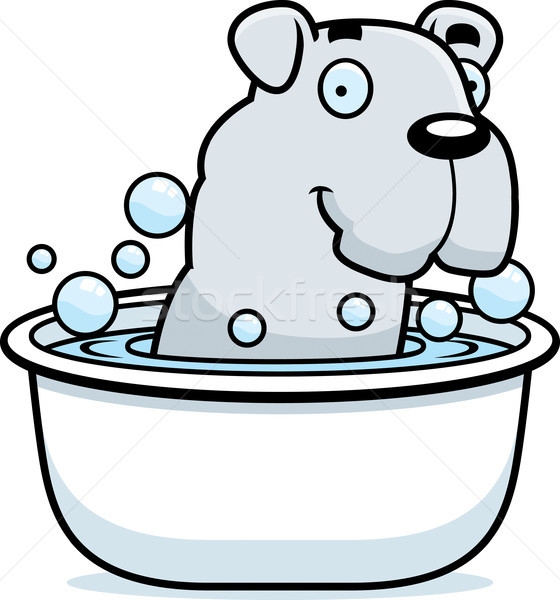 Stock photo: Cartoon Bulldog Bath