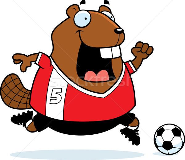 Cartoon бобр Футбол иллюстрация играет спортивных Сток-фото © cthoman
