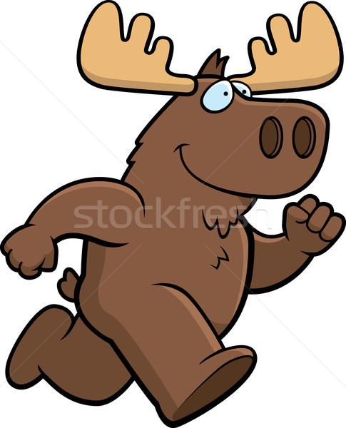 Moose Running Stock photo © cthoman