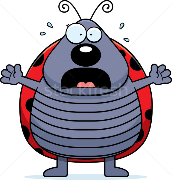 Desenho animado joaninha ilustração animal inseto gritando Foto stock © cthoman