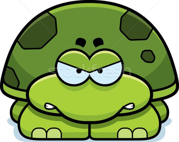 Zangado pequeno tartaruga desenho animado ilustração bebê Foto stock © cthoman
