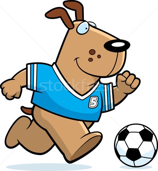 Karikatur Hund Fußball Illustration spielen läuft Stock foto © cthoman