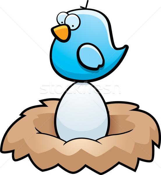 Bird Egg Stock photo © cthoman