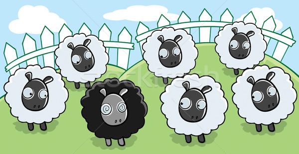 Black Sheep Stock photo © cthoman