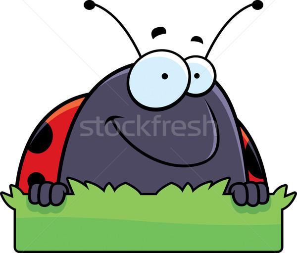 Cartoon mariquita hierba signo ilustración Foto stock © cthoman