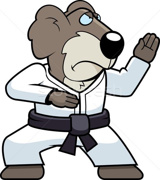 Karate koala Cartoon cinturón Foto stock © cthoman