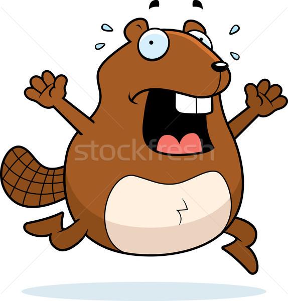 Kunduz panik karikatür çalışma Stok fotoğraf © cthoman