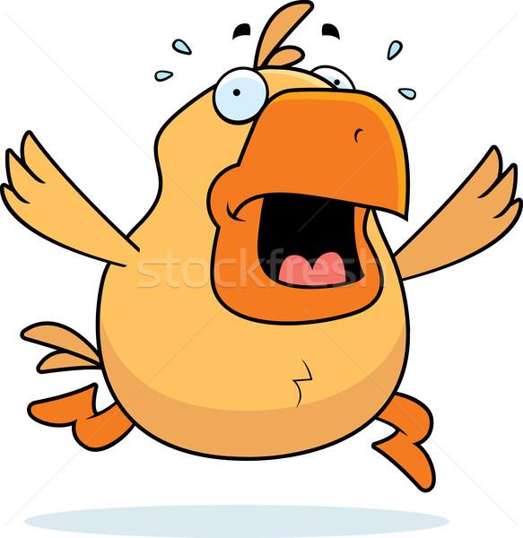 鶏 パニック 漫画 を実行して 動物 ストックフォト © cthoman